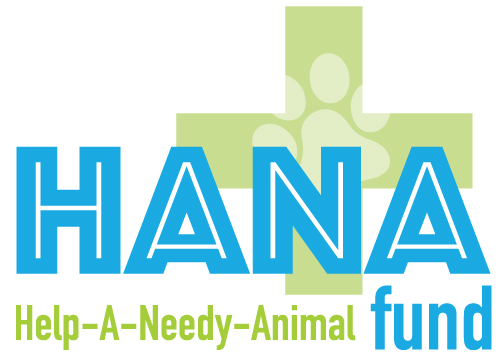 The HANA Fund